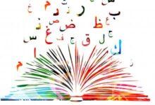Photo of حروف وقوافي في حديقة الشعر