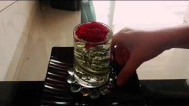 Photo of زهرة واحدة على «المائدة»